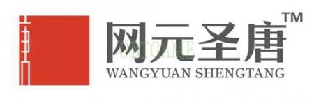wangyuan Swords of Legends Online Account Cash Points 网元圣唐-古剑奇谭